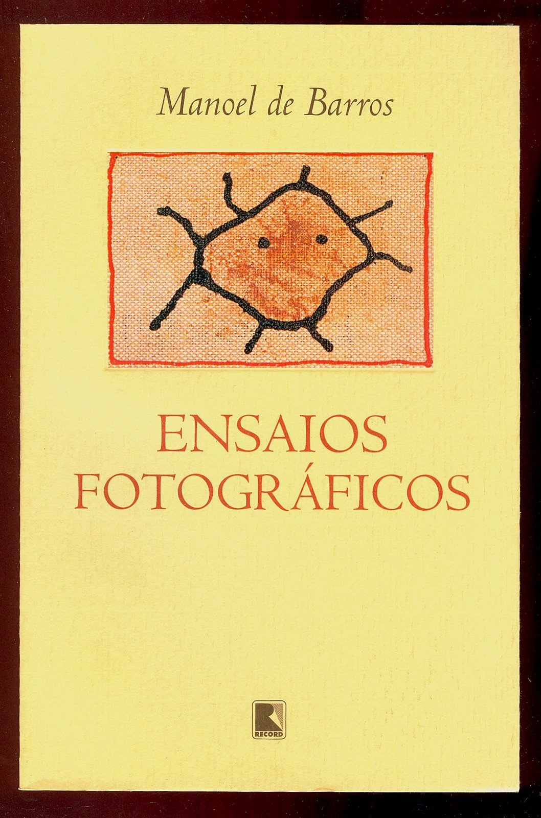 Ensaios Fotográficos - Manoel de Barros